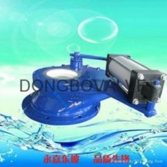 Pneumatic ceramic rotary feed valve