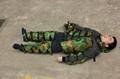 military splint