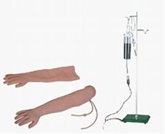 EM-018  高級手臂靜脈穿刺及肌肉注射訓練模型