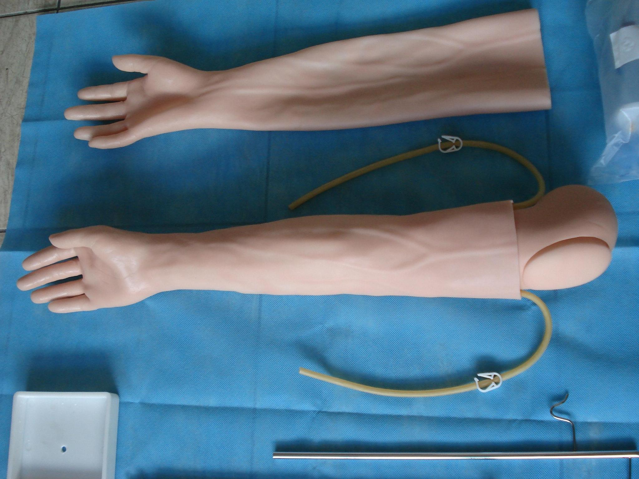 EM-018  高級手臂靜脈穿刺及肌肉注射訓練模型 2