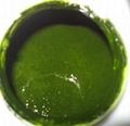 濃縮小球藻液