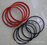 Rubber O-ring 1