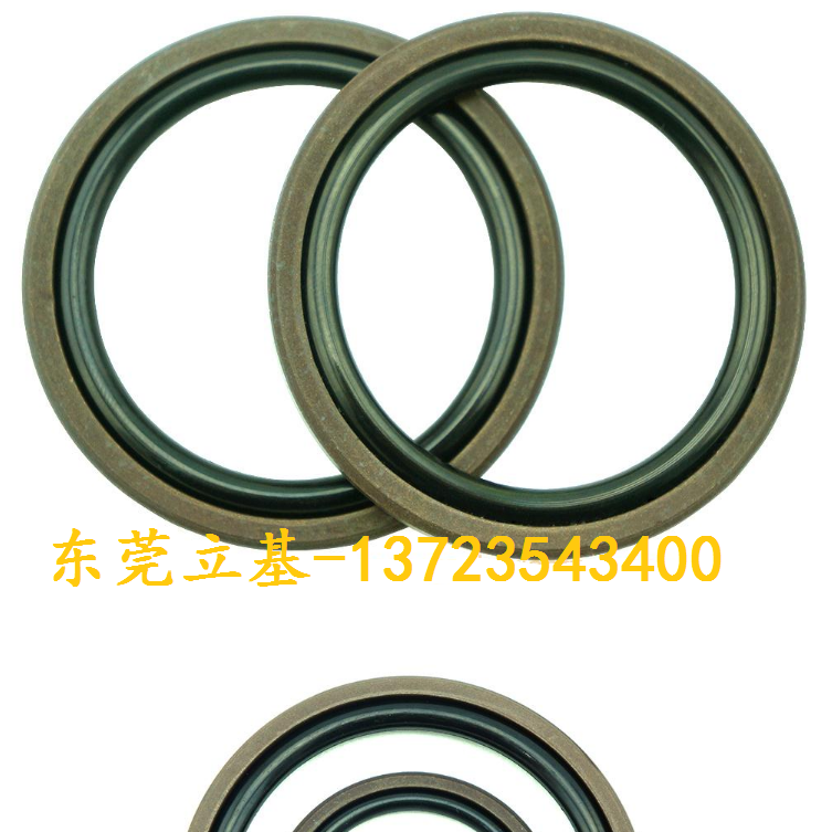Glyd Ring, Axis with Glyd Ring, PTFE Ring, Rubber Gly Ring 1