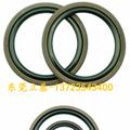 軸用格萊圈,四氟格萊圈,橡膠格