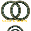 Glyd Ring, Axis with Glyd Ring, PTFE Ring, Rubber Gly Ring