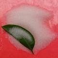 印花胶珠 透明印花胶珠 印花胶珠规格型号