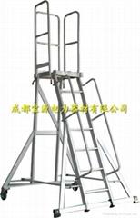 定製平台梯