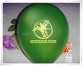 Balloon  Rubber Balloon  19