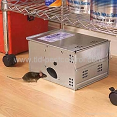 Automatic catching mouse trap