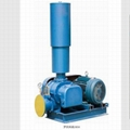 Roots Blower and High Pressure Roots Blower Manufacturer