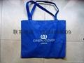 上海无纺布折叠袋 3
