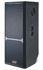 RDB OS-25H双15寸演唱会音箱