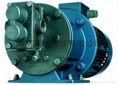 VerdergearSmall小型齒輪泵