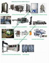 6000BPH Bottling Filling Machine Factory