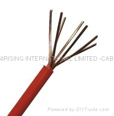 Power cable(PVC insulated singe wire)