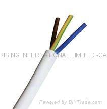 Non-flexible flat cable(BS6500   IEC227)