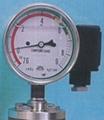 SF6 Gas Density Monitor