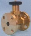 SF6 Bellows seal globe valve 5