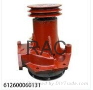 斯太爾WD615水泵