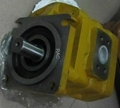CBGJ2100 steering Gear  pump