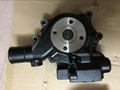 Construction diesel machine QSB3.3 Engine water pump 3800883
