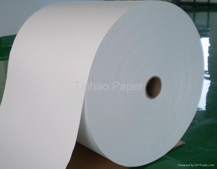 Coffee Filter Paper 23.0gsm 5