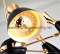 delightfull duke Chandelier 6 Light  BM-4106-6