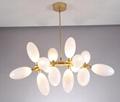 北歐現代經典亞克力餐廳客廳葡萄裝飾吊燈 3