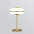 简约设计师台灯轻奢客厅时尚创意卧室书房台灯床头灯 BM-3101 T 1