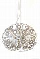 Dandelion Pendant lamp BM-3070P M 3