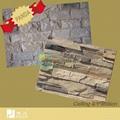 Cultural Stone 3