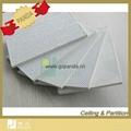 PVC Gypsum Ceiling 2