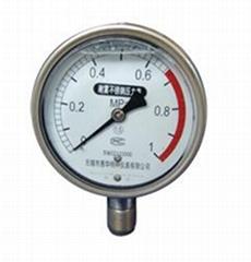 YBF系列耐震不鏽鋼壓力表