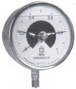 YXXD-100-Z YXXD-150-Z耐震光電信號電接點