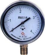 YE系列不鏽鋼膜盒壓力表