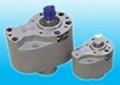 齿轮泵 1