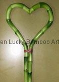 Heart lucky bamboo