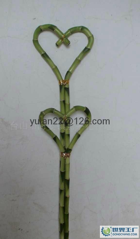 Heart shape lucky bamboo 2