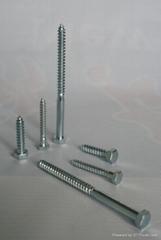 Hex lag screw