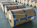 Decorative paper for laminate 4
