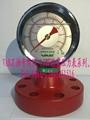 shock-resistant pressure gauge