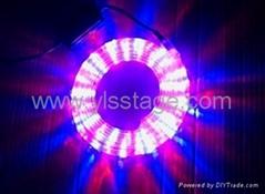 YLS-LED 彩虹管管四线