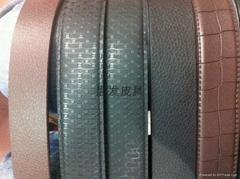 TPS皮带