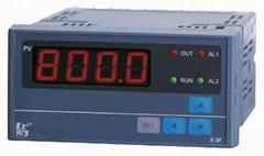 深圳遠傳壓力顯示儀表