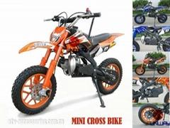 Mini Dirt Bike/Mini Cros