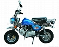 Honda Monkey Style dirt bike 50cc/125cc with eec approval 3