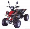 200CC RAPTOR STYLE EEC ATV/QUAD BIKE