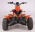 NEW 250CC EEC RACING ATV/QUAD