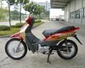 BRAZIL HONDA STYLE 110CC cub motorcycle