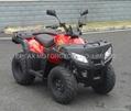 NEW 250CC SPORT ATV QUAD